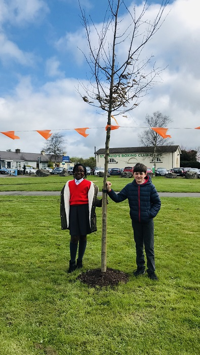 National Tree Week 2019
