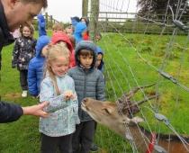 Junior Infants School Tour